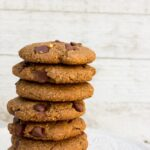 gluten free, oil free, vegan, one bowl double chocolate peanut butter cookies!