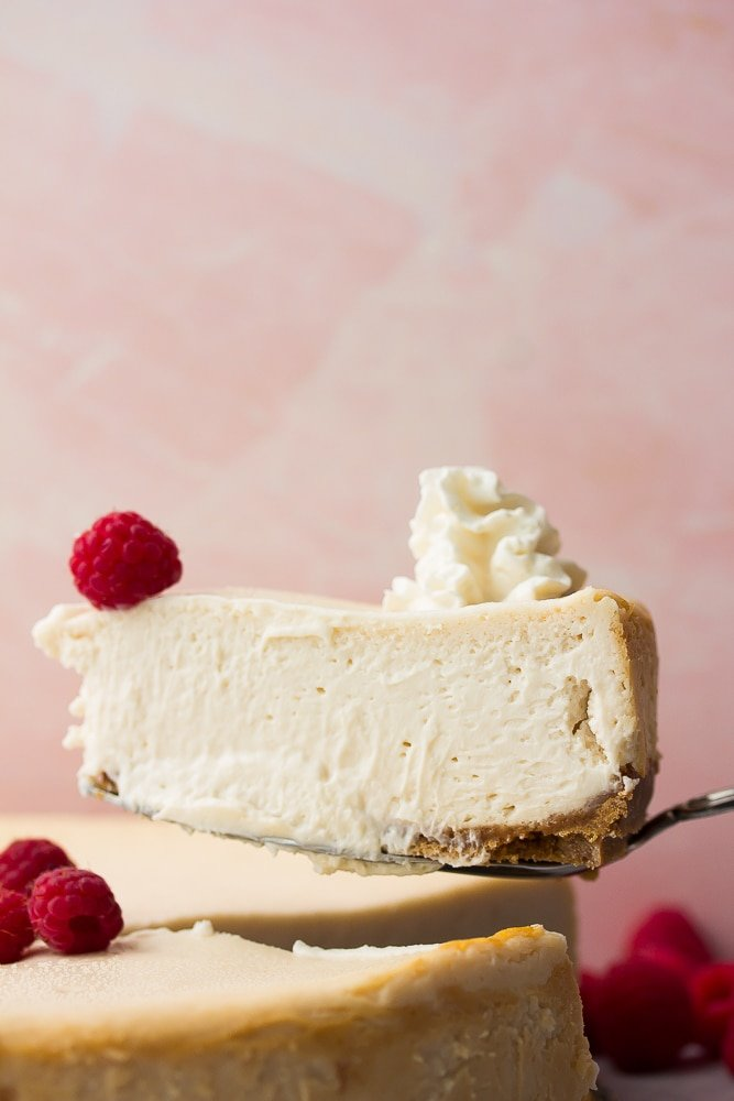 slice of cheesecake, pink background, on serving spatula