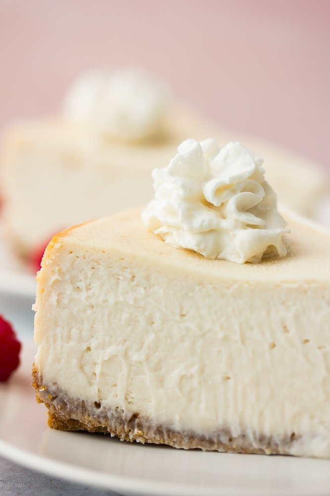close up of piece of cheesecake with whipped cream