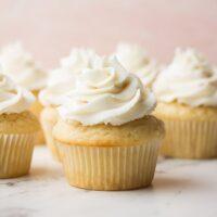 square image of vanilla cupcakes