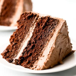 close up of a piece of chocolate cake on a white plate